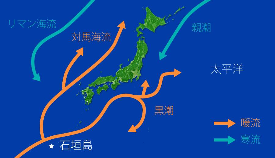 日本周辺の海流の図