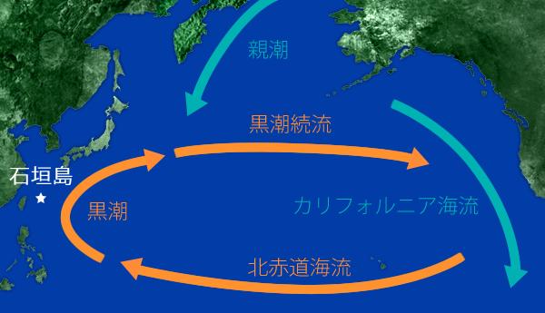 世界における日本周辺の海流の図